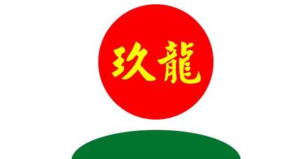 玖龙纸业有限公司